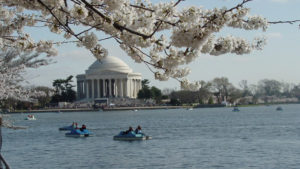 Washington D.C. imagenes